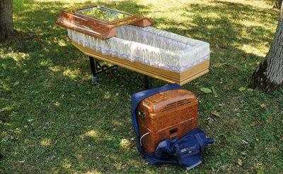 Trasporto frigo con valige